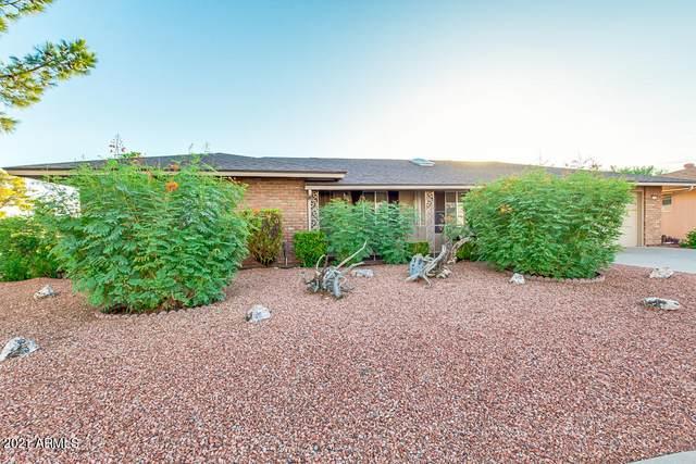 10115 W Shasta Drive, Sun City, AZ 85351 (#6230504) :: Long Realty Company