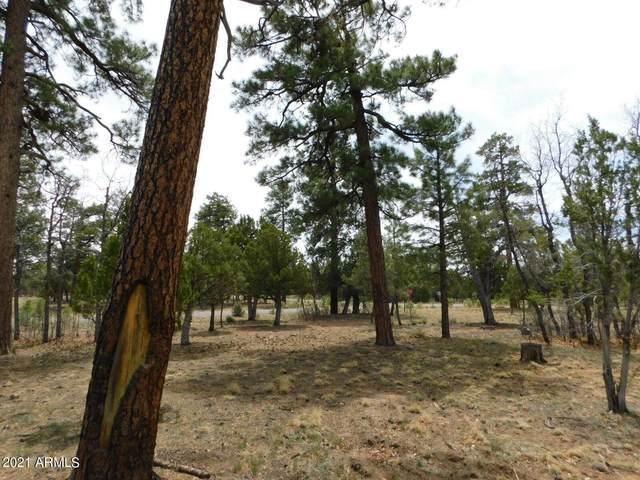 3352 Durango Drive, Happy Jack, AZ 86024 (MLS #6230517) :: Kepple Real Estate Group