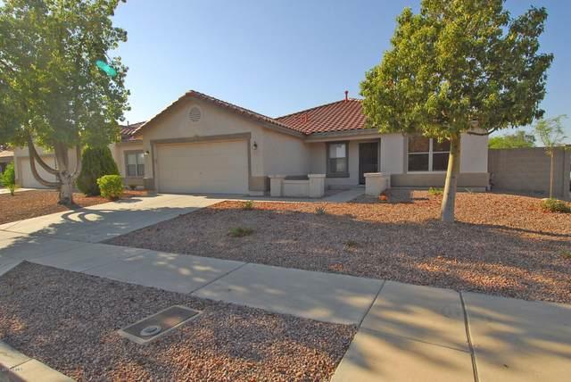 3114 W Cavedale Drive, Phoenix, AZ 85083 (MLS #6230529) :: Yost Realty Group at RE/MAX Casa Grande