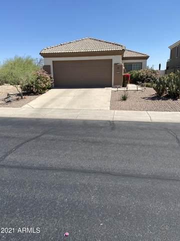 4245 E Cascalote Drive, Cave Creek, AZ 85331 (MLS #6230530) :: Yost Realty Group at RE/MAX Casa Grande