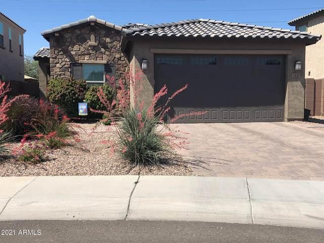 3440 E Wisteria Place, Chandler, AZ 85286 (MLS #6230535) :: The Copa Team | The Maricopa Real Estate Company