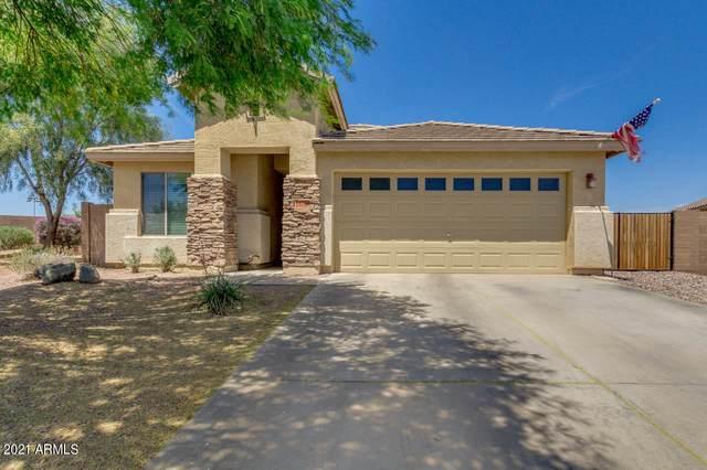 35650 N Belgian Blue Court, San Tan Valley, AZ 85143 (MLS #6230552) :: Yost Realty Group at RE/MAX Casa Grande