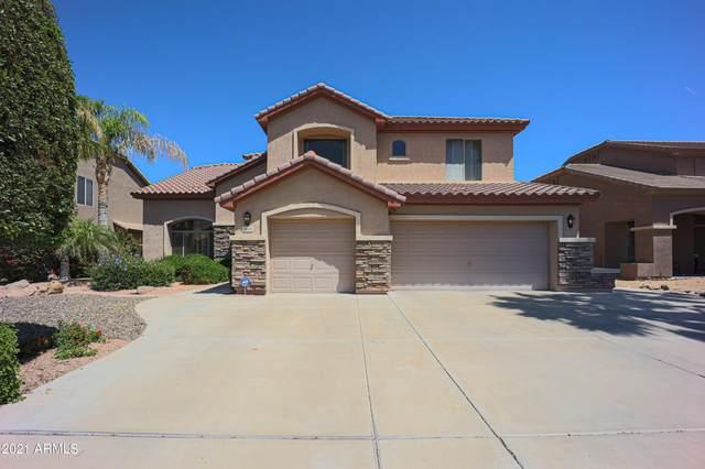 2420 W Marlin Drive, Chandler, AZ 85286 (MLS #6230571) :: Conway Real Estate