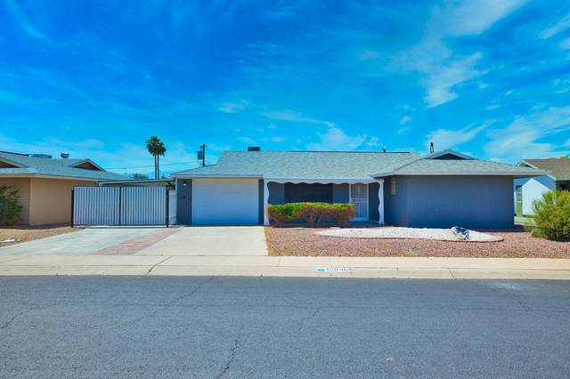 10846 N Madison Drive, Sun City, AZ 85351 (MLS #6230576) :: Yost Realty Group at RE/MAX Casa Grande
