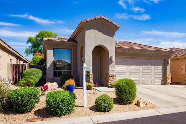 3114 E Windmere Drive, Phoenix, AZ 85048 (MLS #6230613) :: The Copa Team | The Maricopa Real Estate Company