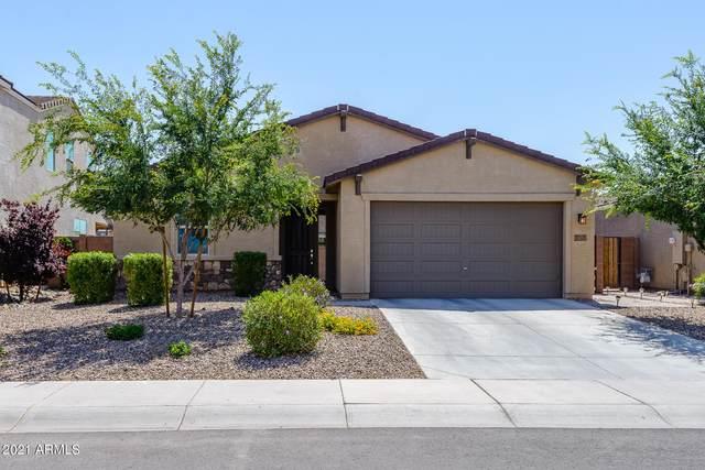 37305 N El Morro Trail, San Tan Valley, AZ 85140 (MLS #6230676) :: Yost Realty Group at RE/MAX Casa Grande
