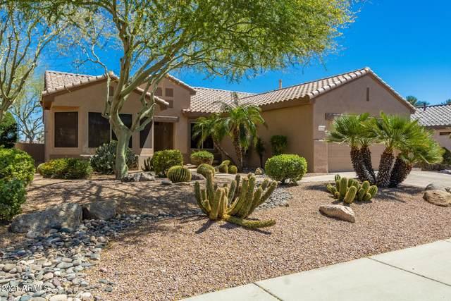 15251 W Camino Estrella Drive, Surprise, AZ 85374 (MLS #6230710) :: Long Realty West Valley