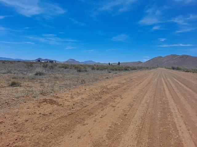000 Swisshelm Road, Pearce, AZ 85625 (MLS #6230720) :: Yost Realty Group at RE/MAX Casa Grande