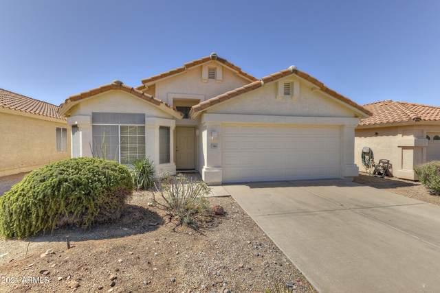 7361 E Hanover Way, Scottsdale, AZ 85255 (MLS #6230734) :: Yost Realty Group at RE/MAX Casa Grande