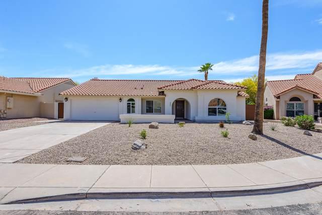 3931 E Cholla Canyon Drive, Phoenix, AZ 85044 (MLS #6230759) :: Yost Realty Group at RE/MAX Casa Grande