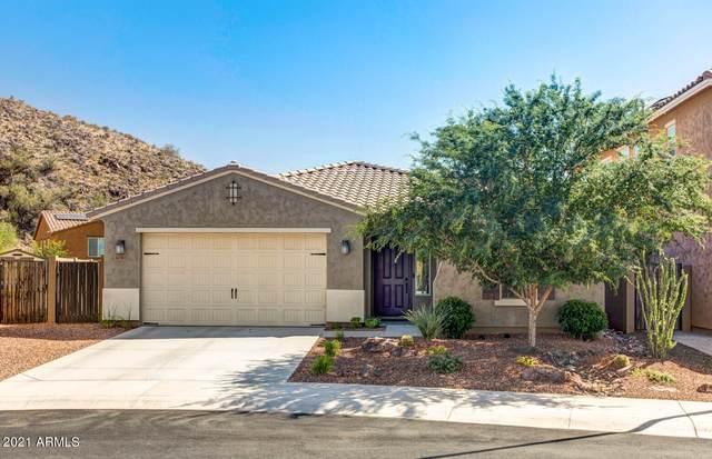 10311 W Rosewood Lane, Peoria, AZ 85383 (MLS #6230804) :: Kepple Real Estate Group