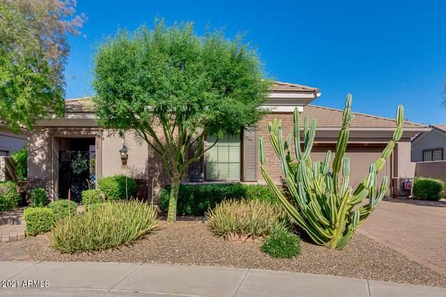4315 S Gold Court, Chandler, AZ 85248 (MLS #6230814) :: Kepple Real Estate Group