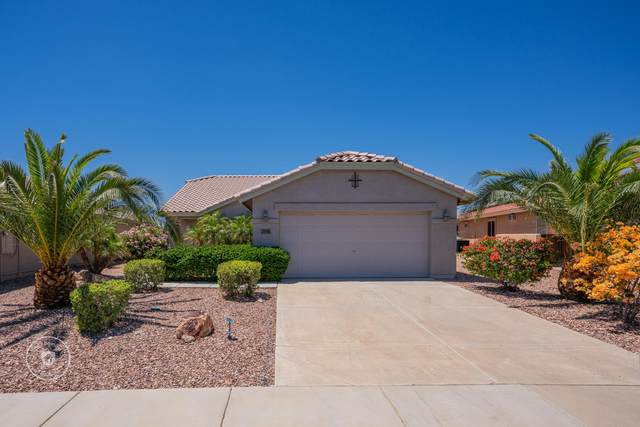 622 S 230TH Avenue, Buckeye, AZ 85326 (MLS #6230899) :: Yost Realty Group at RE/MAX Casa Grande