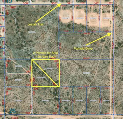 0 N Intrator Drive, Queen Creek, AZ 85142 (MLS #6230958) :: Yost Realty Group at RE/MAX Casa Grande