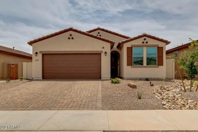 17679 W Via De Luna Drive, Surprise, AZ 85387 (MLS #6230991) :: Long Realty West Valley