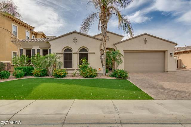 3782 E Nolan Drive, Chandler, AZ 85249 (#6230993) :: The Josh Berkley Team