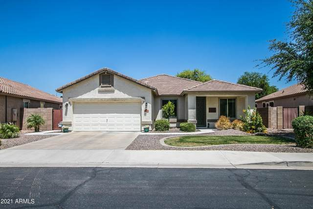 4272 E Torrey Pines Lane, Chandler, AZ 85249 (MLS #6231005) :: Yost Realty Group at RE/MAX Casa Grande