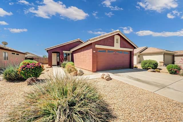 1077 E Graham Lane, Apache Junction, AZ 85119 (MLS #6231017) :: The Riddle Group