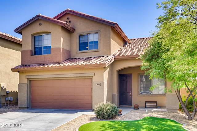 3865 W Ashton Drive, Anthem, AZ 85086 (MLS #6231033) :: The Riddle Group