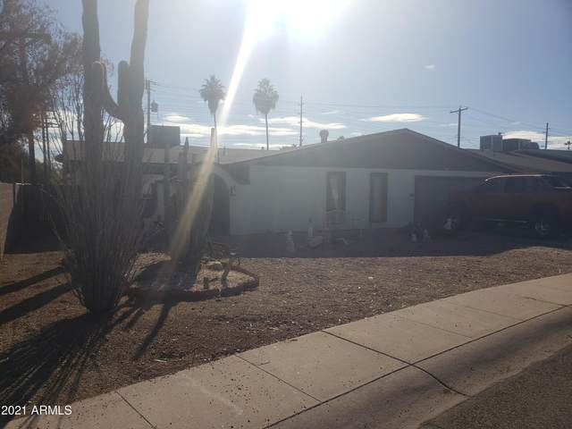 3811 W Loma Lane, Phoenix, AZ 85051 (MLS #6231065) :: Yost Realty Group at RE/MAX Casa Grande