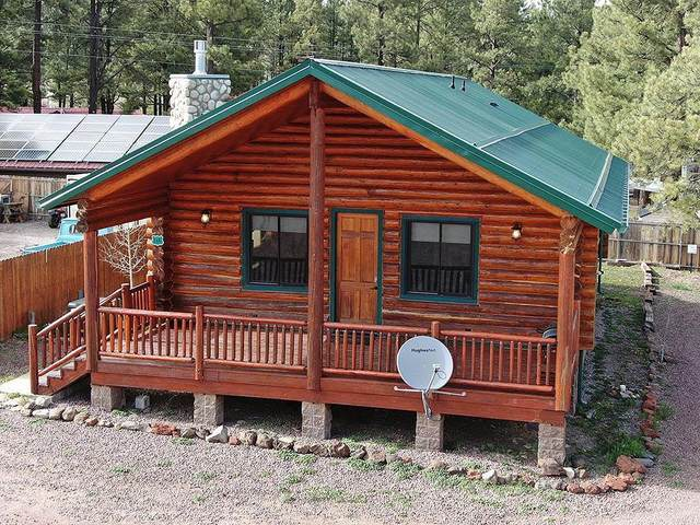44 Main Street #166, Greer, AZ 85927 (MLS #6231080) :: Dave Fernandez Team | HomeSmart
