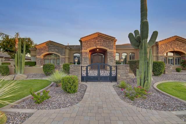 3031 E Portola Valley Drive, Gilbert, AZ 85297 (MLS #6231098) :: Yost Realty Group at RE/MAX Casa Grande