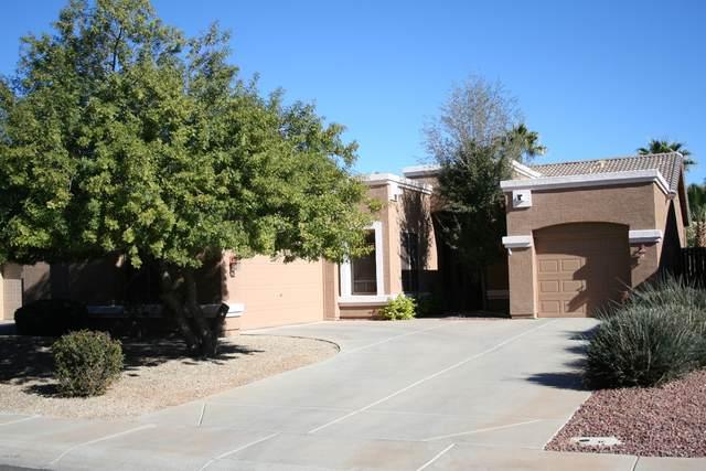 1805 S Morrison Lane, Gilbert, AZ 85295 (MLS #6231138) :: Yost Realty Group at RE/MAX Casa Grande
