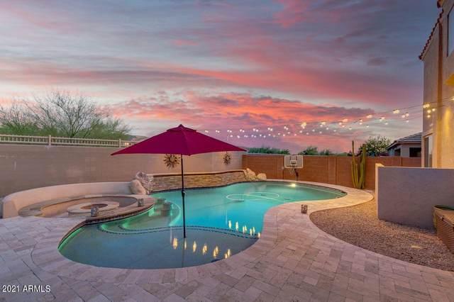 23117 N 41ST Street, Phoenix, AZ 85050 (MLS #6231147) :: Conway Real Estate