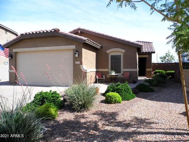42247 N Tulip Tree Street, San Tan Valley, AZ 85140 (MLS #6231148) :: Kepple Real Estate Group