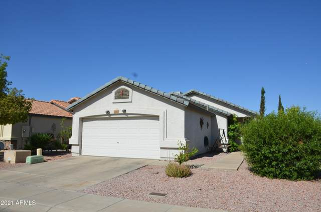 21610 N 29TH Drive, Phoenix, AZ 85027 (MLS #6231167) :: Yost Realty Group at RE/MAX Casa Grande