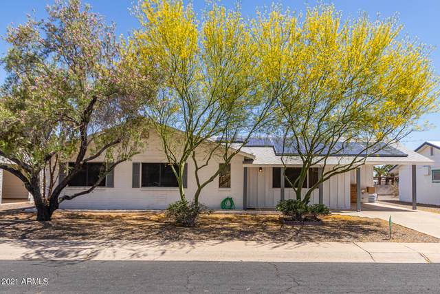 10774 W Hope Drive, Sun City, AZ 85351 (MLS #6231201) :: Yost Realty Group at RE/MAX Casa Grande