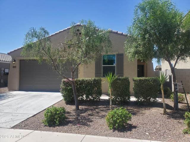21347 W Holly Street, Buckeye, AZ 85396 (MLS #6231234) :: Yost Realty Group at RE/MAX Casa Grande
