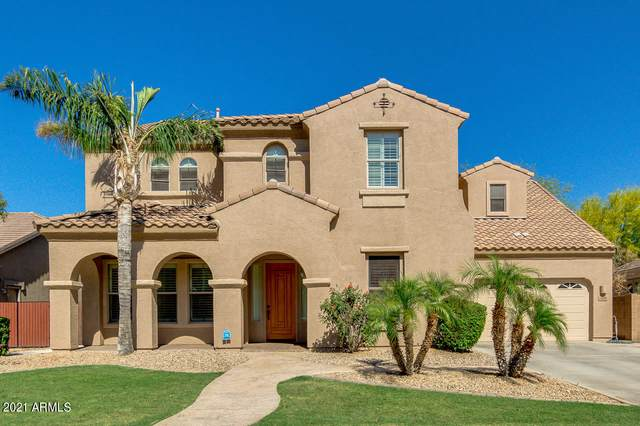 3423 E Bluebird Place, Chandler, AZ 85286 (MLS #6231270) :: Arizona 1 Real Estate Team