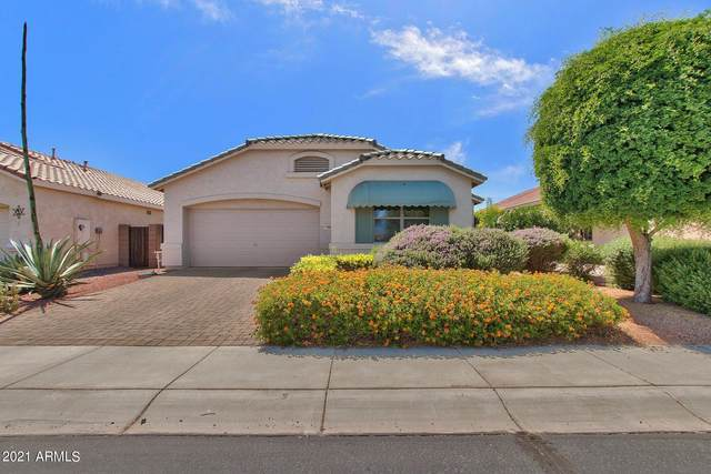17986 N Javelina Drive, Surprise, AZ 85374 (MLS #6231275) :: The Everest Team at eXp Realty
