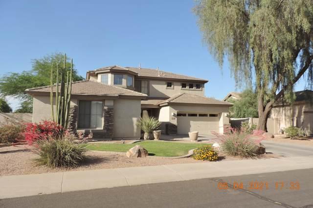 4120 E Patrick Street, Gilbert, AZ 85295 (MLS #6231278) :: CANAM Realty Group