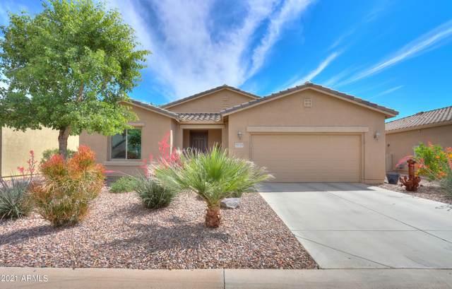 20169 N Oxbow Lane, Maricopa, AZ 85138 (MLS #6231281) :: The Copa Team | The Maricopa Real Estate Company