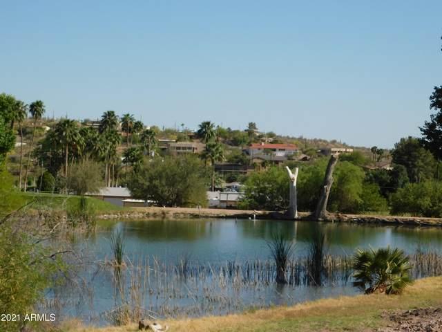 925 N Queen Mary Way, Queen Valley, AZ 85118 (MLS #6231293) :: Yost Realty Group at RE/MAX Casa Grande