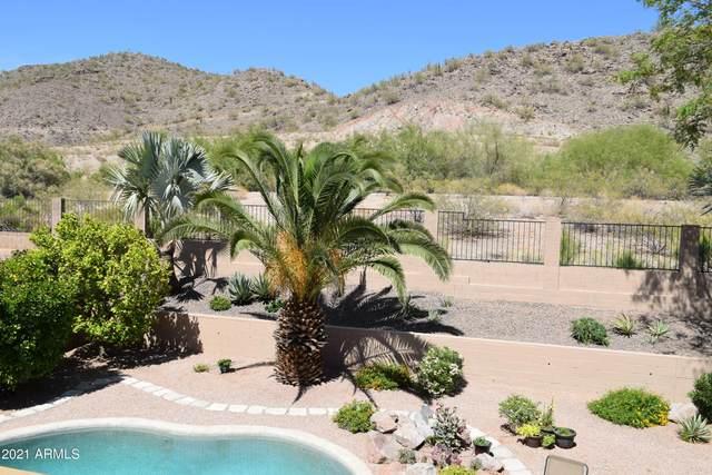 20627 N 17TH Way, Phoenix, AZ 85024 (MLS #6231307) :: Yost Realty Group at RE/MAX Casa Grande