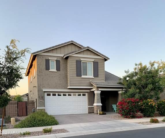 20698 E Canary Way, Queen Creek, AZ 85142 (MLS #6231363) :: Kepple Real Estate Group