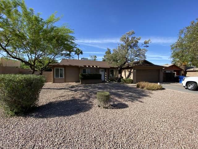 5010 E Dahlia Drive, Scottsdale, AZ 85254 (MLS #6231367) :: Zolin Group