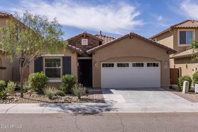 1739 W Lacewood Place, Phoenix, AZ 85045 (MLS #6231379) :: Yost Realty Group at RE/MAX Casa Grande