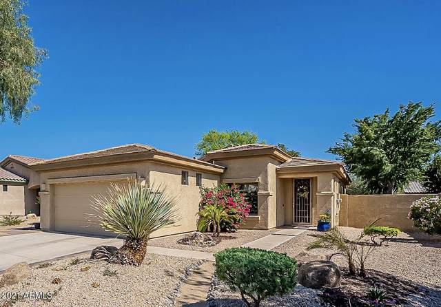 14061 W Edgemont Avenue, Goodyear, AZ 85395 (MLS #6231434) :: Long Realty West Valley