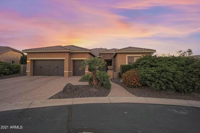 2596 N 165TH Drive, Goodyear, AZ 85395 (MLS #6231472) :: Arizona Home Group