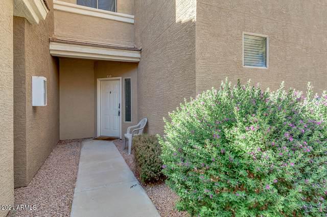 1335 E June Street #117, Mesa, AZ 85203 (MLS #6231479) :: The Helping Hands Team