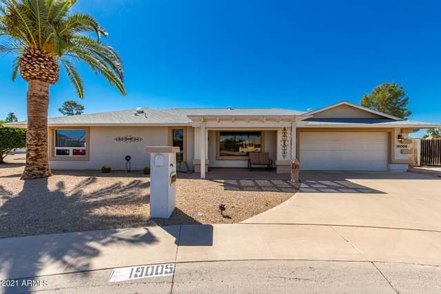 19005 N 99TH Drive, Sun City, AZ 85373 (MLS #6231488) :: Yost Realty Group at RE/MAX Casa Grande