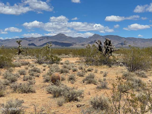160 Acre E Juniper Drive, Yucca, AZ 86438 (MLS #6231520) :: Yost Realty Group at RE/MAX Casa Grande