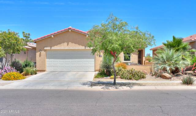 2612 E Desert Wind Drive, Casa Grande, AZ 85194 (#6231527) :: Luxury Group - Realty Executives Arizona Properties