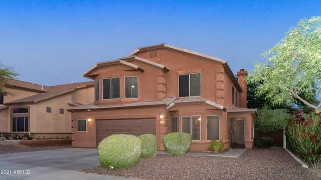 7435 E Christmas Cholla Drive, Scottsdale, AZ 85255 (MLS #6231533) :: Kepple Real Estate Group