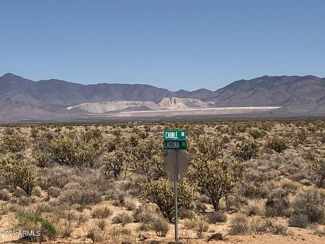 614 Acres Golden Cross Estates, Golden Valley, AZ 86413 (MLS #6231547) :: Arizona Home Group