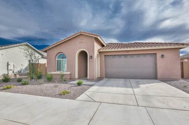 21059 E Estrella Road, Queen Creek, AZ 85142 (MLS #6231550) :: The Copa Team | The Maricopa Real Estate Company